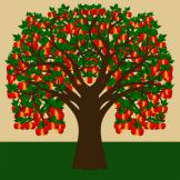 Apfelbaum 06