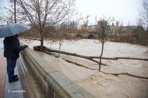 Río Bernesga
