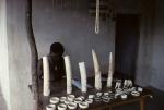 Ivory dealer