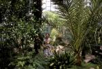 Tacoma Arboretum