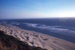 Sea-  Coast,  Lions