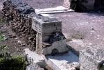 Cat among ruins