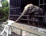 Beppu zoo