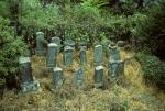 Walk around countryside of Beppu