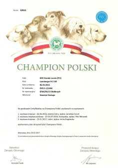 PKR_II-121464-CHPL_BEZ ADRESU-1