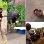Dans le cadre de l'épidémie de Konzo, l'INRB estime que la malnutrition chronique est à la base de nombreuses maladies en RDC