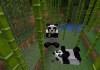 Panda dan bambu yang akan muncul di update Minecraft terbaru