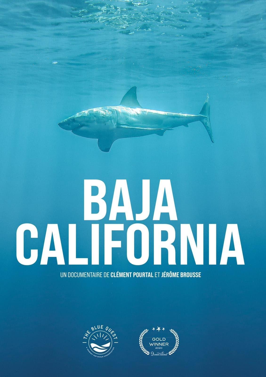 The blue quest / Baja california