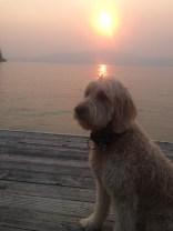 1st evening sunset