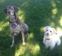 Ms Petey & Pappy