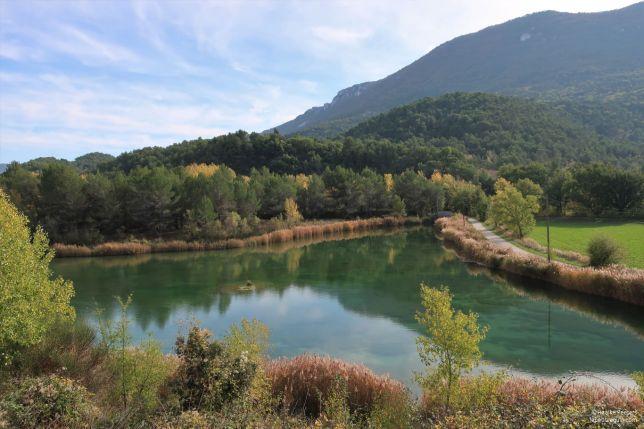 Provence (Le petit requin)