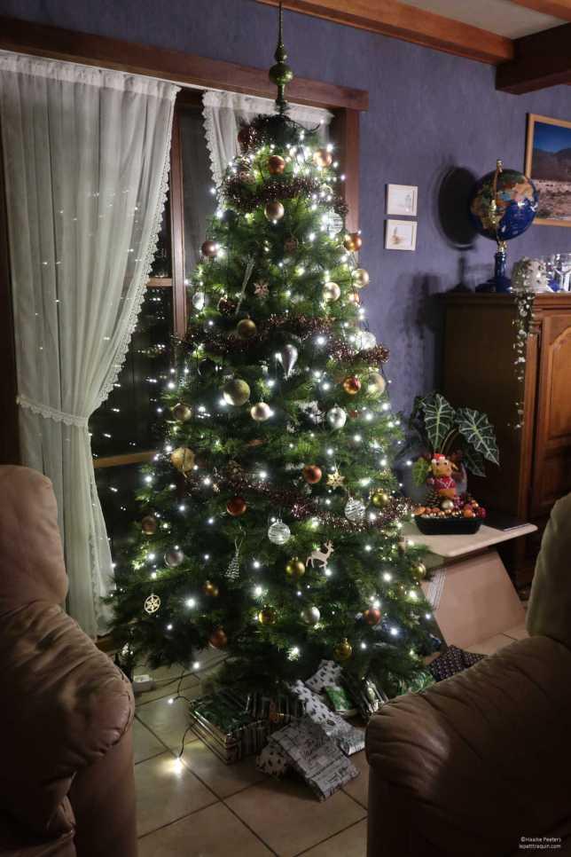 Kerstboom (Le petit requin)