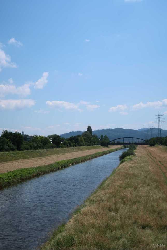 Fluss Kinzig Offenburg (Le petit requin)