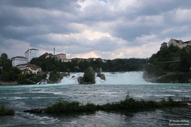 Rheinfall (Le petit requin)