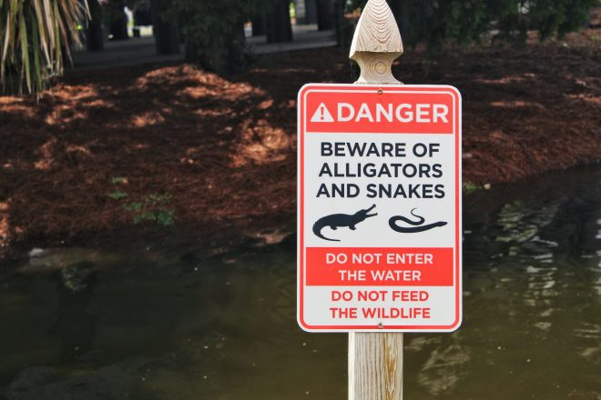 Danger sign. Do not feed the alligators.