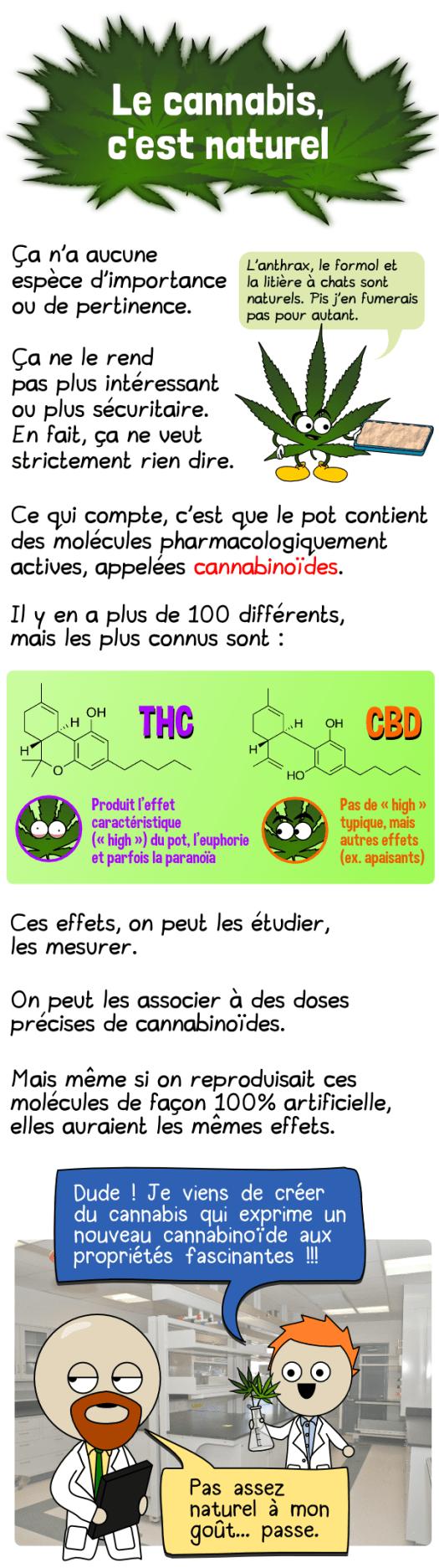 cannabis-01a