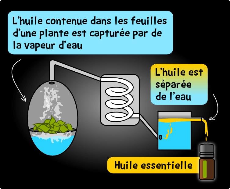 fabrication huiles essentielles eau distillation