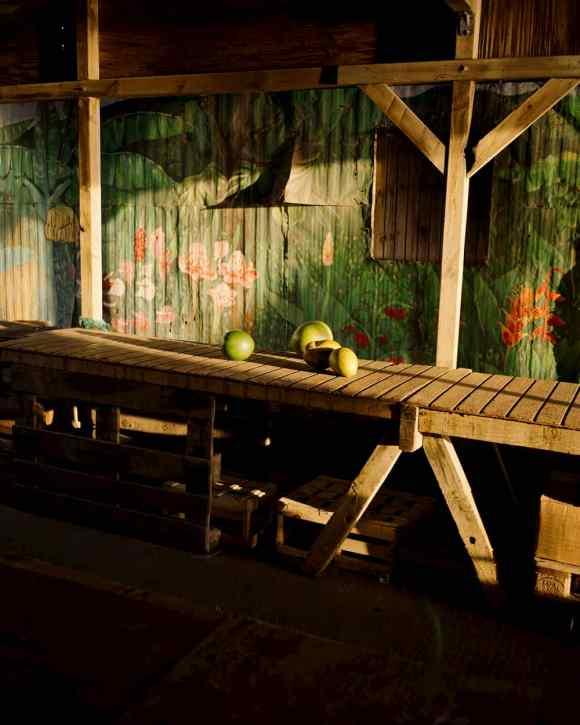 Des pommes éclairées par la lumière du soleil, photographiées par Gregory Halpern