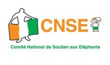 Mondial 2014/ Les Supporter Ivoiriens n'ont pas le cœur