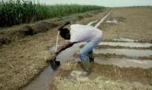 Bouaké/ Pour contrer la menace du changement climatique : des experts réfléchissent sur l'amélioration des systèmes d'irrigation