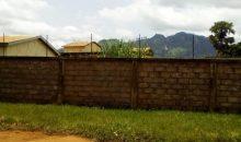 Côte d'Ivoire: fin de parcours pour  la bande de Goh Franck