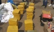 [Côte d'Ivoire/Insécurité] Des dealers mis hors d'état de nuire par la gendarmerie à Agboville