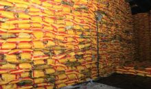 [Côte d'Ivoire ''Affaire cargaison de 18 000 T de riz''] Le silence inquiétant  du ministre de l'Agriculture, de la Direction du PAA et de la DGAMP