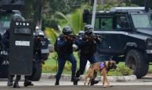 [Côte d'Ivoire/Daloa] La gendarmerie nationale démantèle un réseau de dealers de drogue, 6341 000 FCFA et 1,5 kg de cannabis saisis