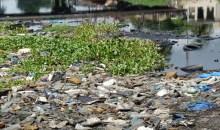 [Côte d'Ivoire/Environnement] Barracuda Challenge, la grande journée de nettoyage de la lagune Ebrié lancée samedi 26 octobre prochain