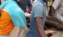 [Côte d'Ivoire/Manifestations contre la candidature de Ouattara ce jeudi] Déjà 1 mort à Bonoua