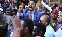 [Ethiopie] En prison depuis huit mois, 24 opposants entament une grève de la faim