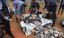 [Trafic de cocaïne] Comment la Côte d'Ivoiredevient peu à peu la plaque tournante en Afrique de l'ouest