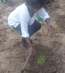 [Côte d'Ivoire] Mme Clarisse Kouamé (Entrepreneure) : «  Que l'État  nous donne l'agrément pour la vulgarisation de l'artémisia »