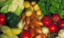 [Côte d'Ivoire] Le gouvernement annonce la célébration de la 41ème  Journée Mondiale de l'Alimentation (JMA)