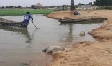 [Religion] Un jeune pasteur meurt noyé en voulant baptiser ses fidèles