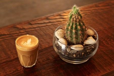 Cortado-Myriade-cafe