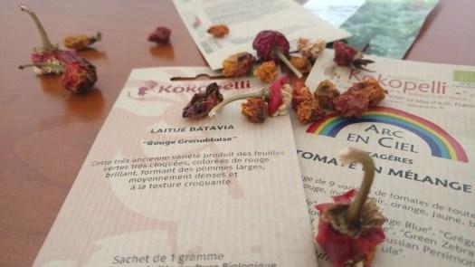 semence-graine-libre-reproductible-permaculture