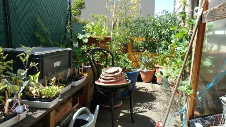 terrasse-permaculture-urbaine-potager-bio
