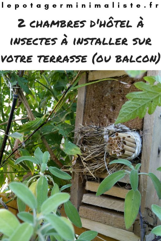 chambres-hotel-insectes-potager-terrasse-balcon-pinterest