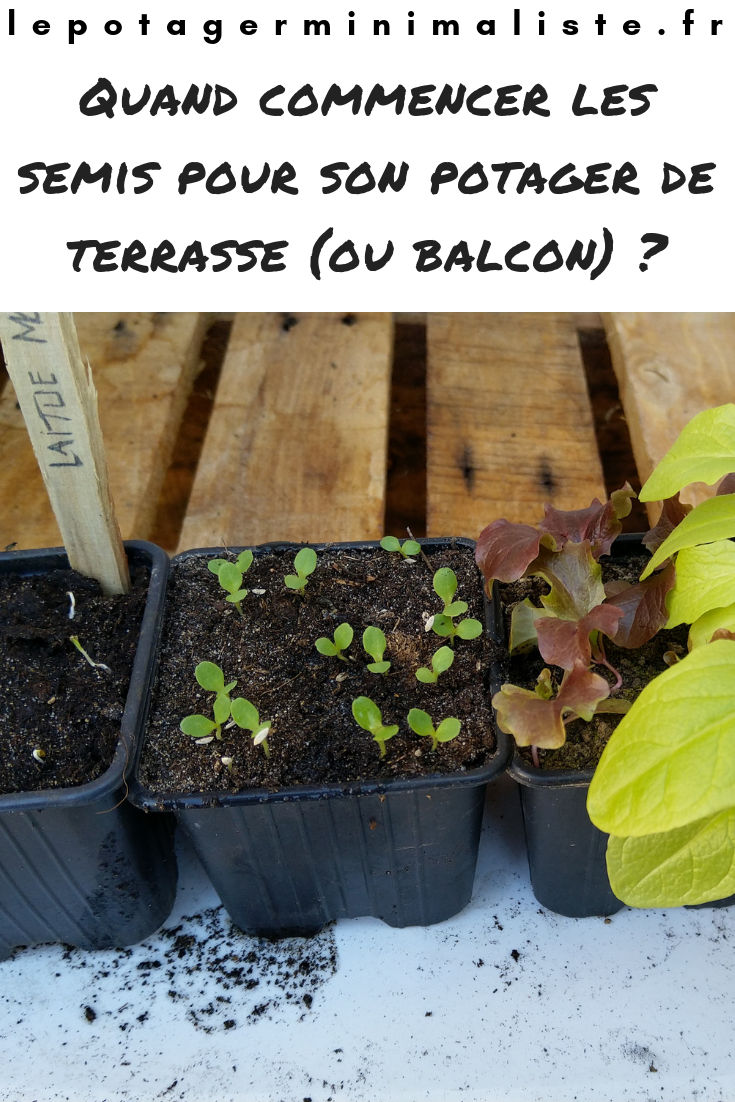 date-semis-potager-balcon-terrasse-pinterest
