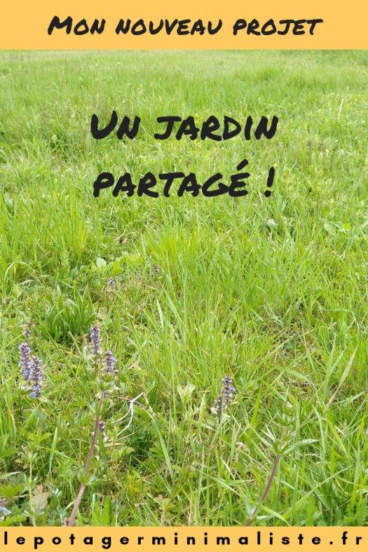 jardin-partagé-agriculture-permaculture-urbaine-projet-pinterest