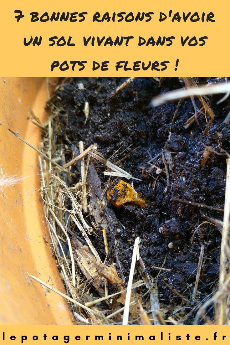 sol-vivant-pot-fleurs-permaculture-urbaine-pinterest