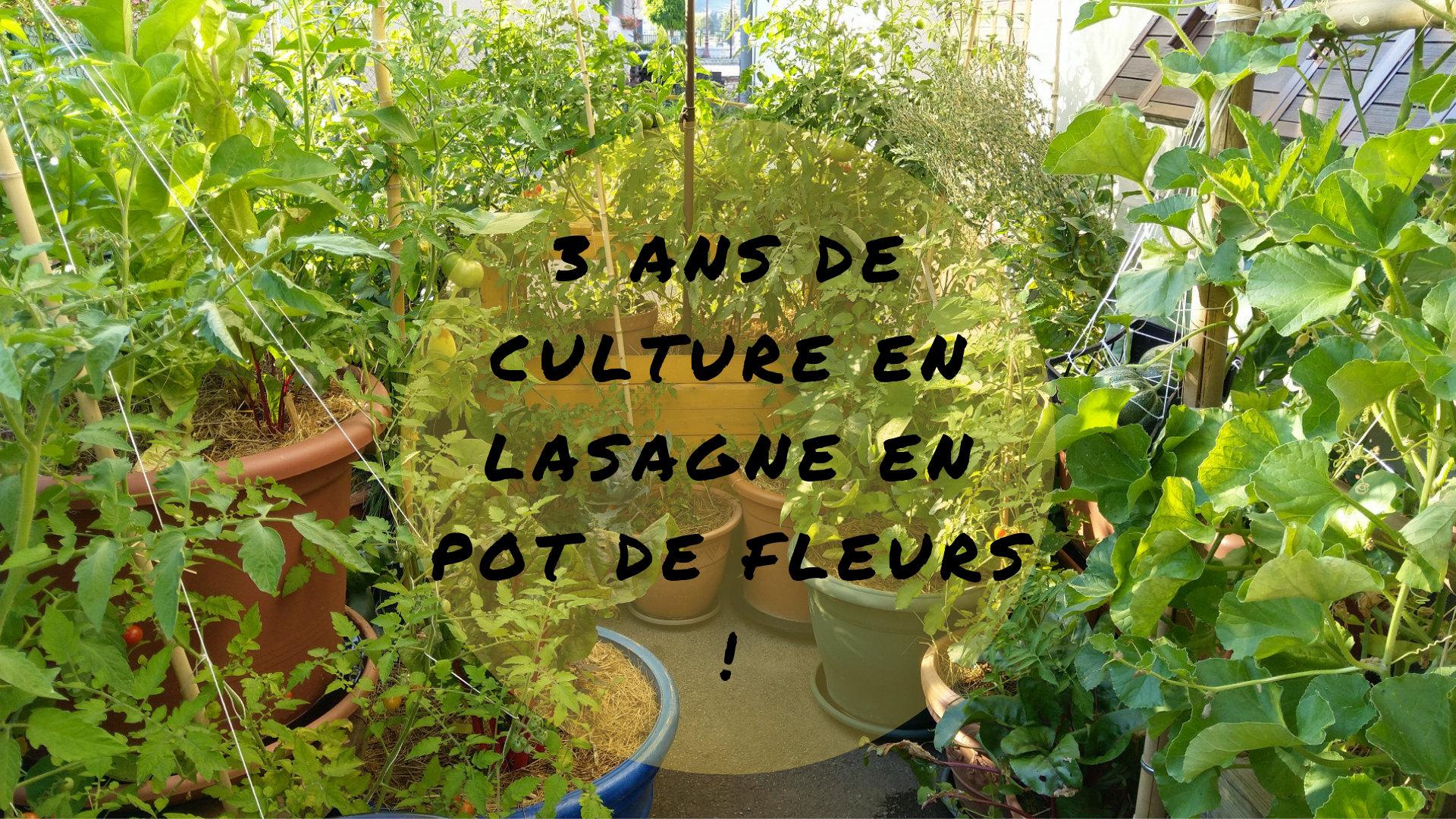 culture-lasagne-pot-fleurs-balcon-terrasse