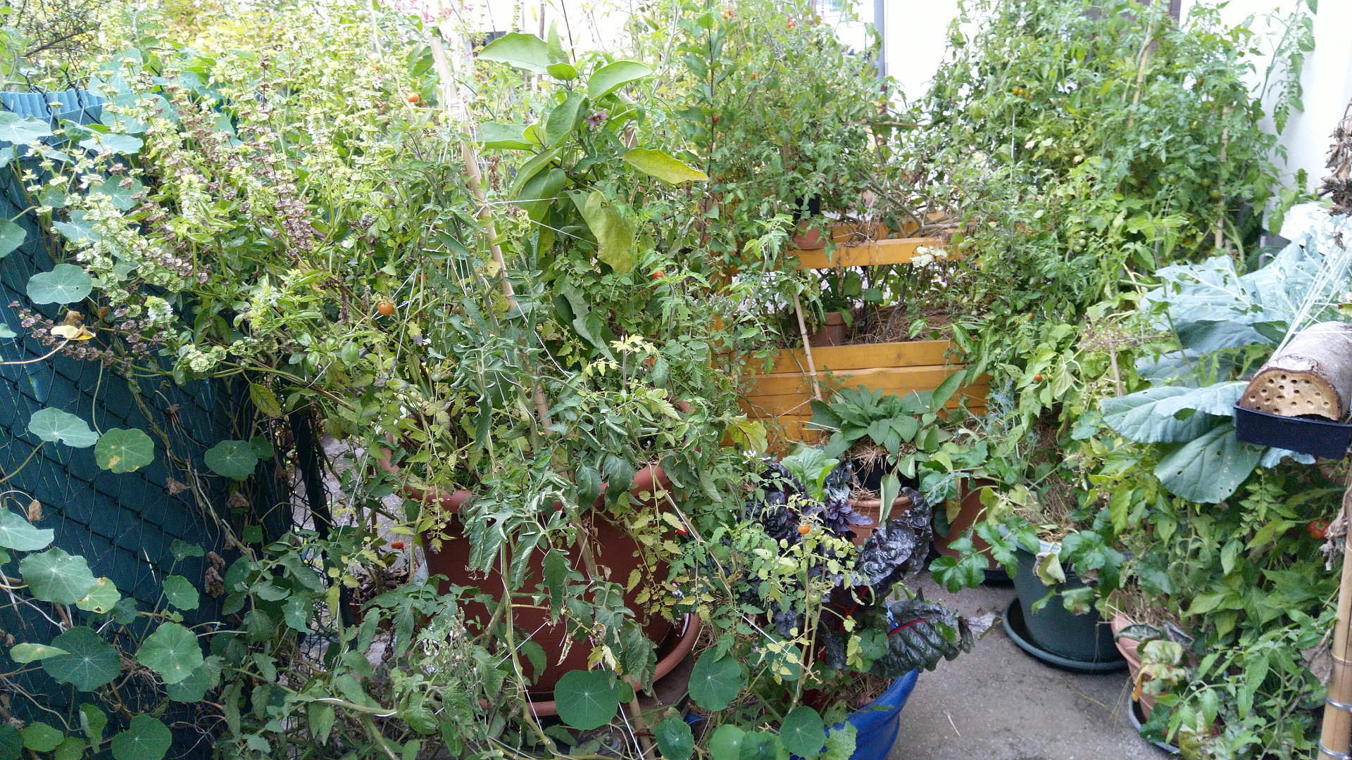 quoi-faire-jardin-automne-permaculture