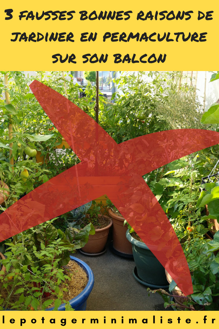fausses-raisons-potager-balcon-permaculture-pinterest