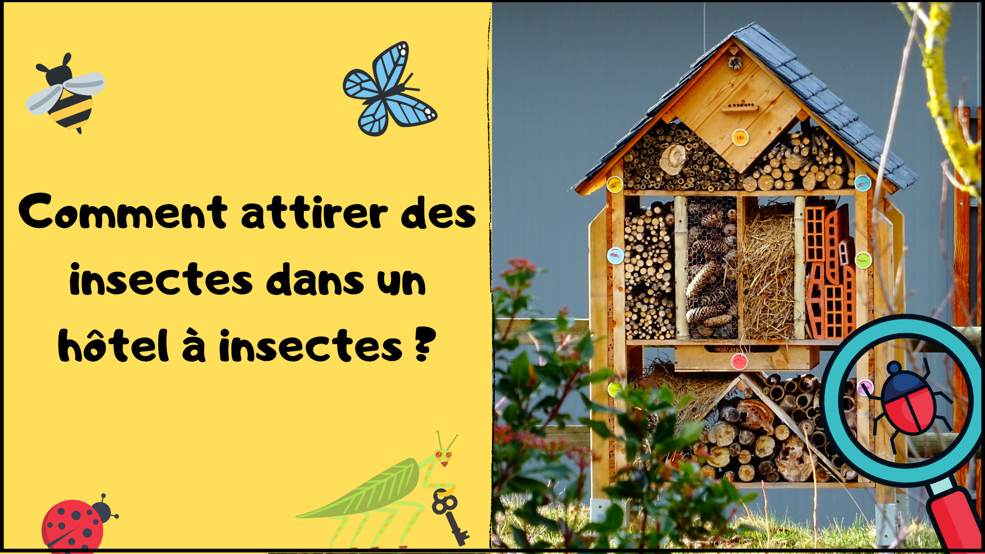 comment-attirer-insectes-hotel-insectes