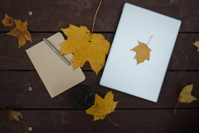 plan-observation-note-cahier-automne