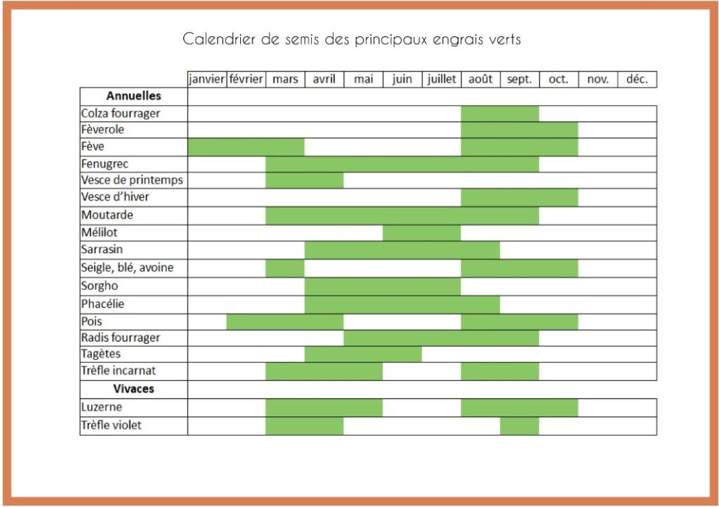 calendrier semis engrais vert