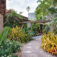 Howto Turn Your Garden into an Exotic Escape