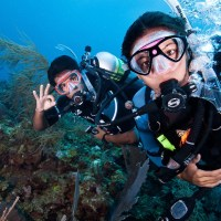 7 Items that Make Scuba Diving Safe for Beginners